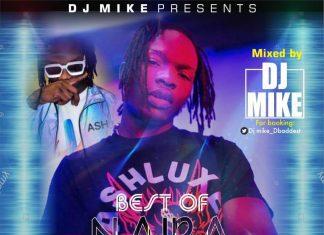 "DJ Mike – Best Of Naira Mixtape ""NBG Non Stop Mix 2020"